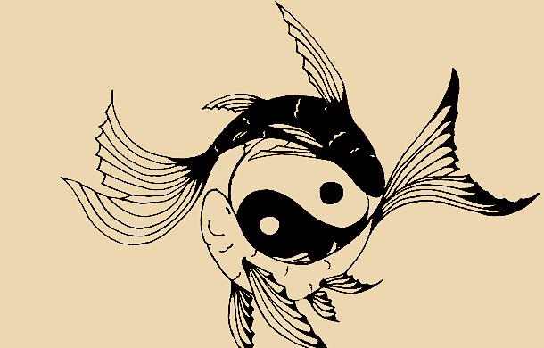 yinyangfish