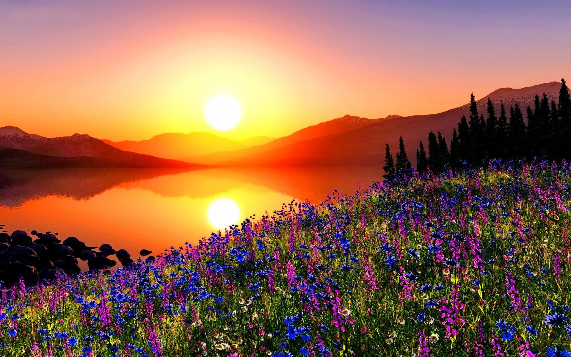 Smell of Sun - khaosland