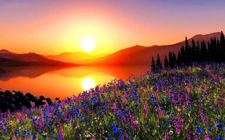 glowing-sunrise-229905