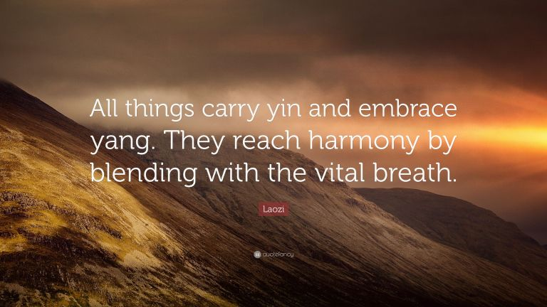 5162867-Laozi-Quote-All-things-carry-yin-and-embrace-yang-They-reach